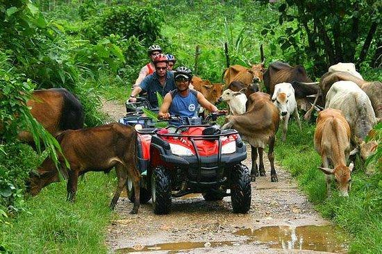 半日アドベンチャー:プンタカナのATV 4x4、川の洞窟、ドミニカ文化