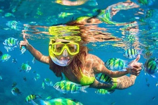 Private Tour: Blue Lagoon Snorkeling...