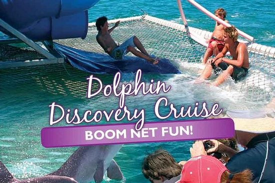 Port Stephens Dolphin Discovery...