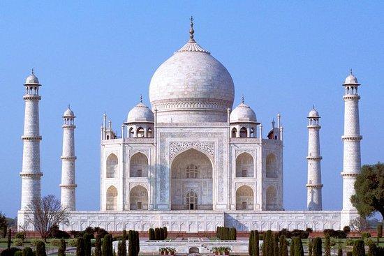从德里开车的私人同日泰姬陵之旅