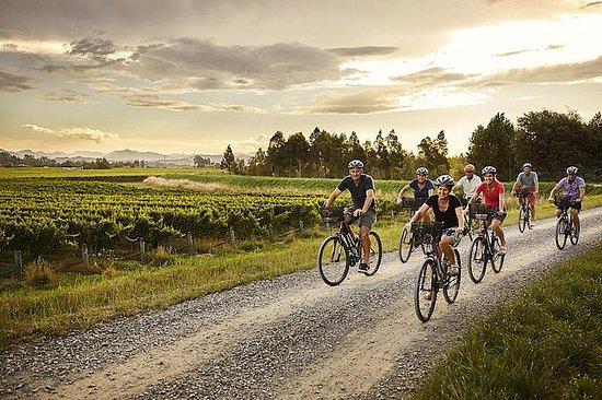 Tour autoguiado de vinos en bicicleta