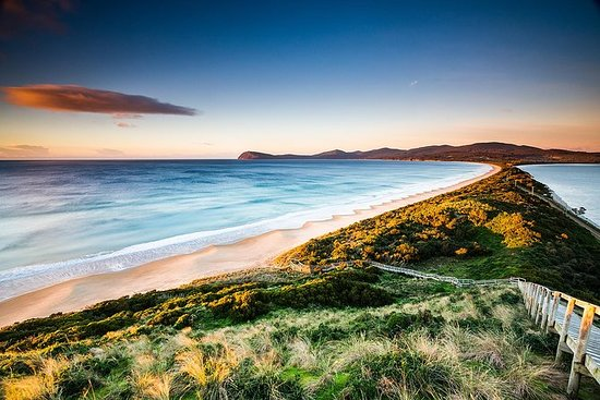 SHORE EXCURSION - Full-Day Guided Bruny Island Tour from Hobart