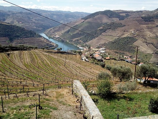 The Douro Valley