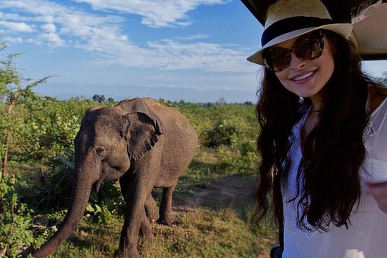 Udawalawe Safari Dagstur fra Kalutara...