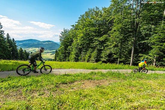 Mszana Dolna, Polska: Bike Park Kasina