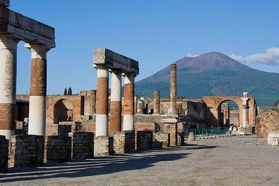Pompeii ruïnes & wijnproeverijen met ...