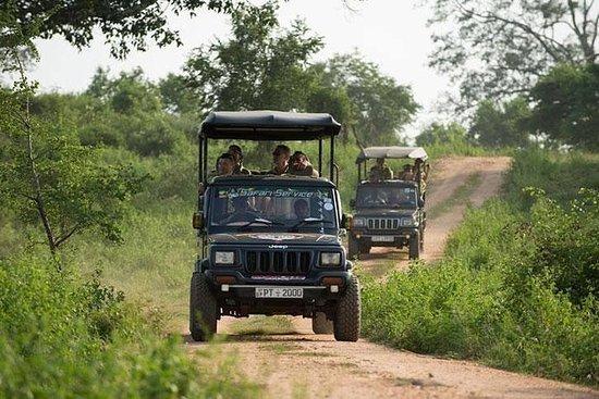 Udawalawa National Park Safari fra...