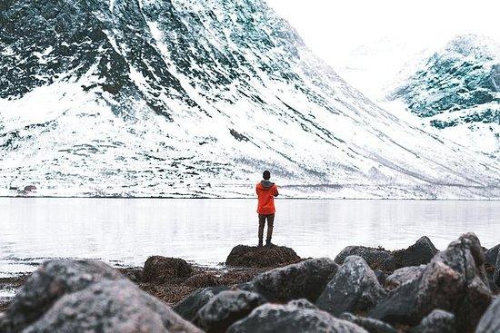 Arctic Fjord Sightseeing mit dem...