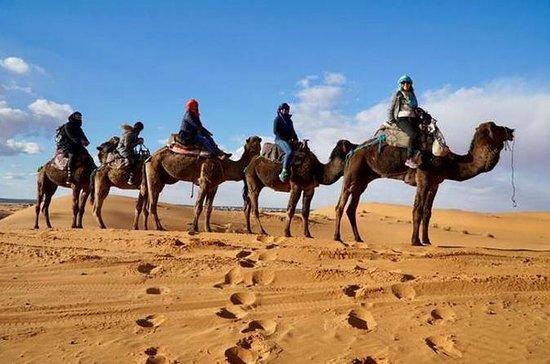 マラケシュからメルズーガの砂漠を通ってフェズへ:共有
