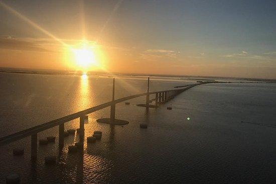 Vedi tutti gli splendidi Tampa Bay in