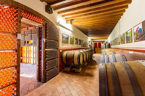 Winery Agriturismo Santo Stefano...
