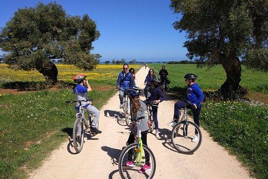 Masseria's Bike Tour met vegetarische ...