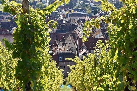 VinoBus: tour en grupo a Eguisheim...
