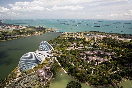 Marina Bay Sands: Gardens by the Bay