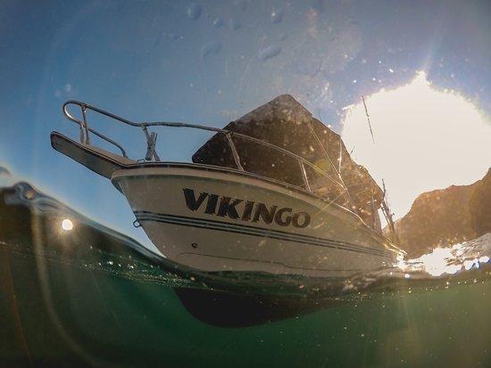 Vikingo Charters