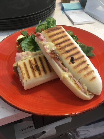 Ham and Cheese Toasted Pannini