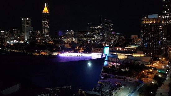 Hilton Garden Inn Atlanta Downtown: View of the Aquarium roof
