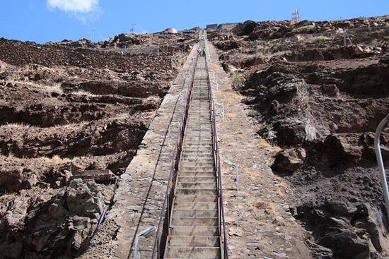 JacobS Ladder 2021