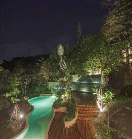 Swimming-pool / night view