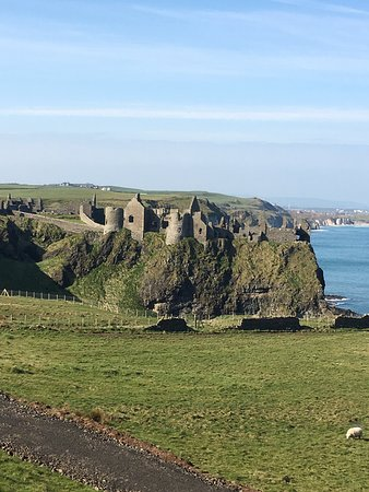 Giant's Causeway, Belfast Titanic Experience And Dark Hedges Tour from Dublin Resmi
