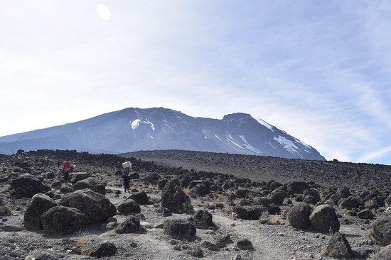 Kilimanjaro Region, Tanzânia: Kilimanjaro Climbing