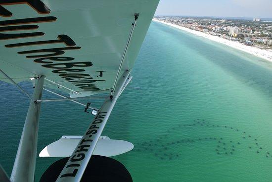 Fly The Beach.com