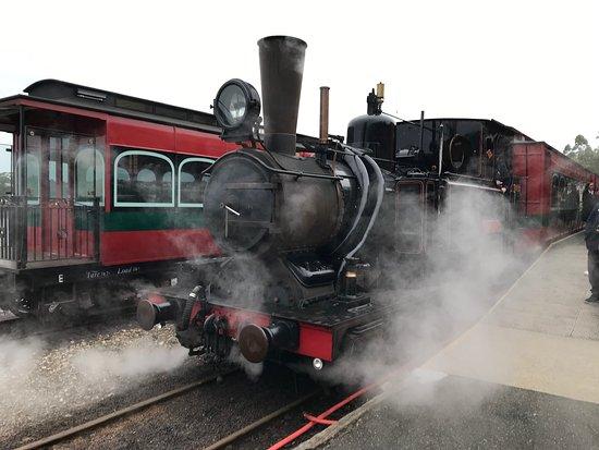 West Coast Wilderness Railway: Río y...