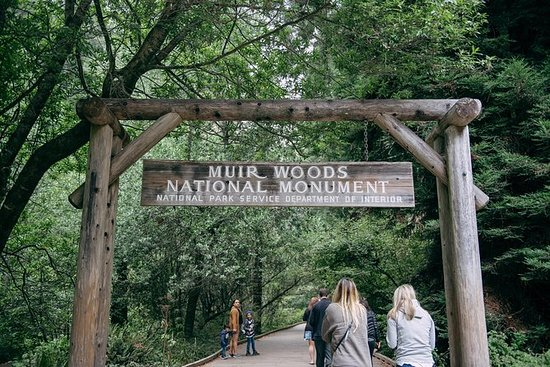 San Francisco Super Saver: Muir Woods...