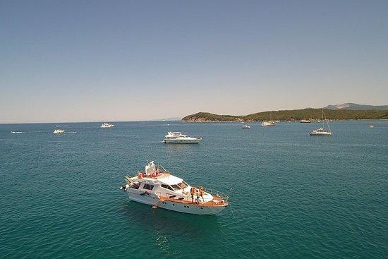 Crucero privado de un día en el...
