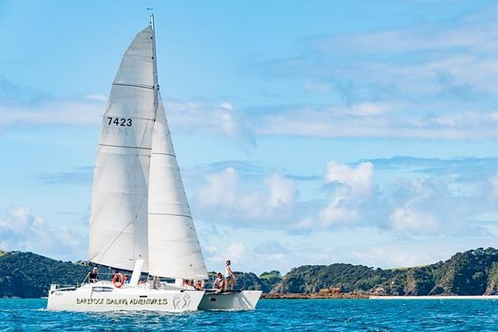 Island Hopper Day Cruise
