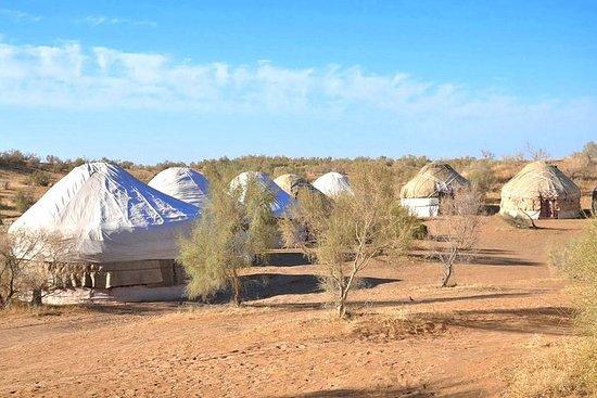 2 dager Desert Yurt Camp tur