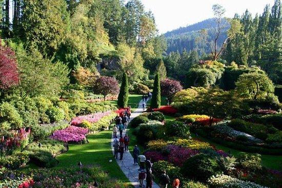 Tour dei giardini di Butchart di 3 ore