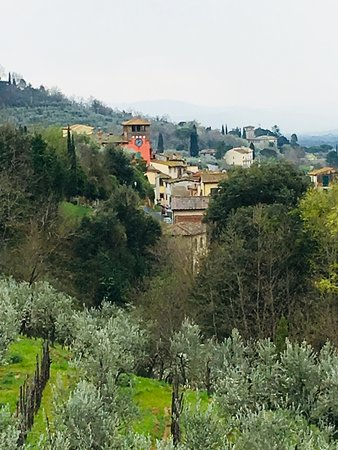Wonderful stay in the Tuscan countryside