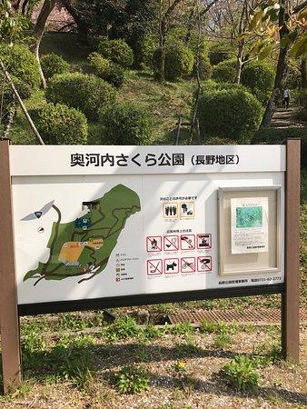 Nagano Park