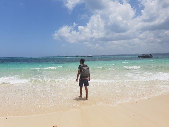 Ilha de Zanzibar, Tanzânia: Zanzibar excursion safari blue
