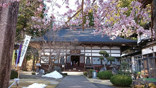 Nihonmatsu, Japón: 桜が咲く境内