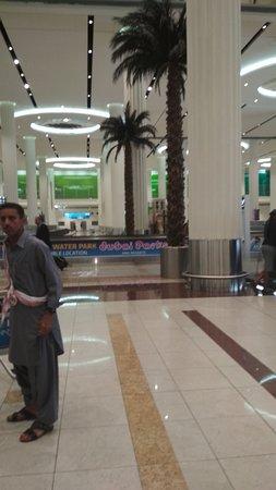 Long walks with plenty of shopping