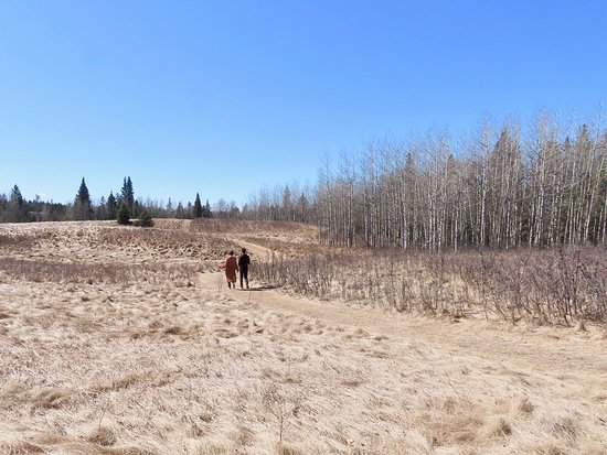 Lacombe, Kanada: Who wouldn't enjoy a walk out here?