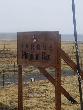 Parque Pinguino Rey Photo