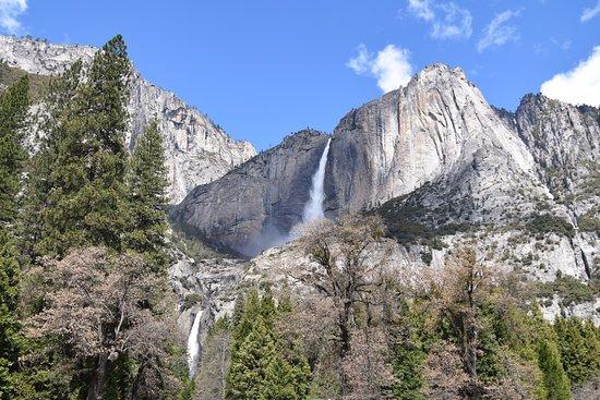 Curry Village: Yosemite Falls