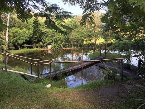 Heliodora Minas Gerais fonte: media-cdn.tripadvisor.com