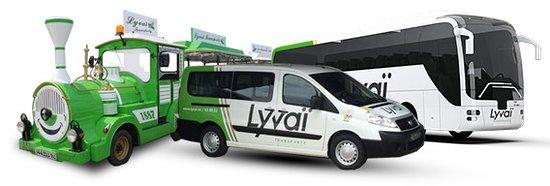 Lyvai Company