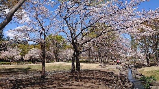 Hanagawa Undo Park