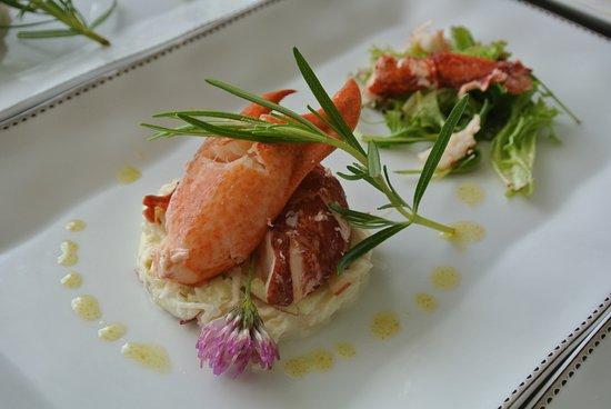 primavera: Salade de Homard
