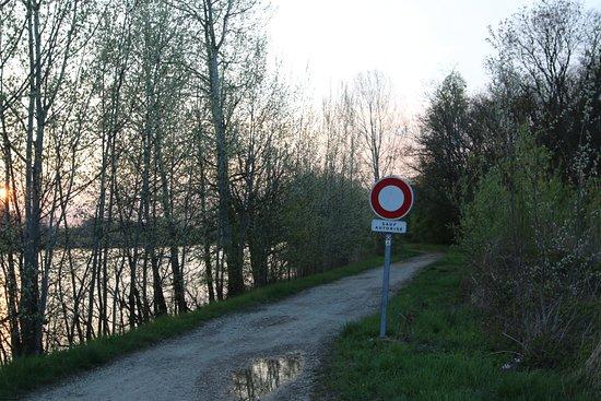 La piste cyclable au départ de LUX, permet de se rendre directement sur les bords de Saône