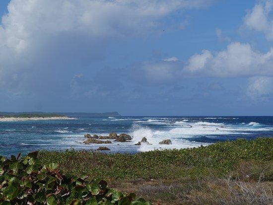 Bleu Pearl Service Touristique: Fotostop Atlantik