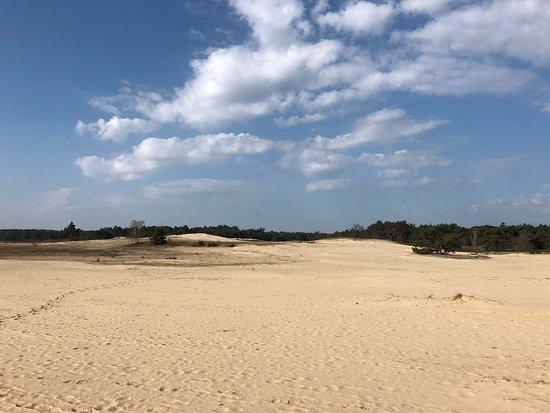Oerrr op het Mosselse Zand