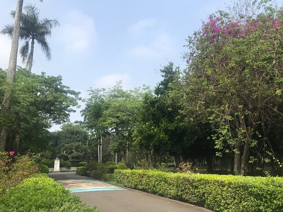 Tongxin Park