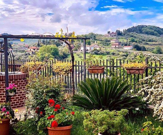 Pinetina di Rocca San Giovanni