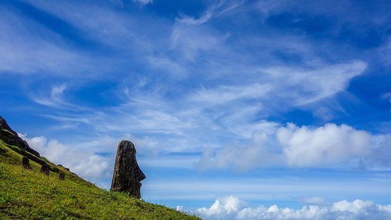 Rapanui Pioneers Society (RPS)